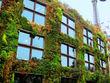 Sağlıklı binalara ilgi tüm dünyada arttı