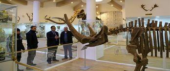 Türkiye'nin İlk Zooloji ve Doğa Müzesi Gaziantep'te Açılıyor!