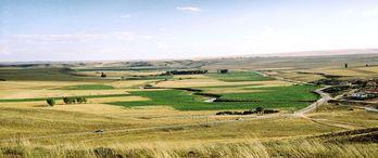 2B ve tarım arazileri için son ödeme günü 7 Eylül