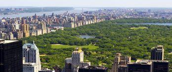 İstanbul'un dev parkı Central Park'ın 3 katı olacak