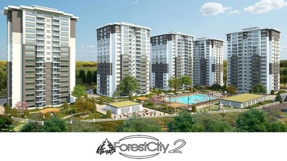 Forest City 2  Projesi