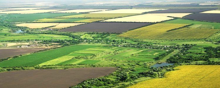 Salihli Belediyesi'nden Satılık Tarım Arazisi ve Arsa