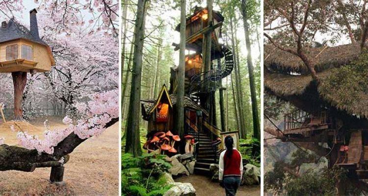 Birbirinden İlginç 40 Ağaç Ev