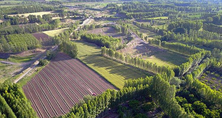 Hazineye ait tarım arazilerindeki kiralar ertelendi