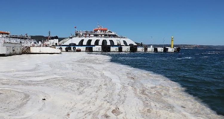 Marmara Denizi'nde 1700 metreküp müsilaj temizlendi
