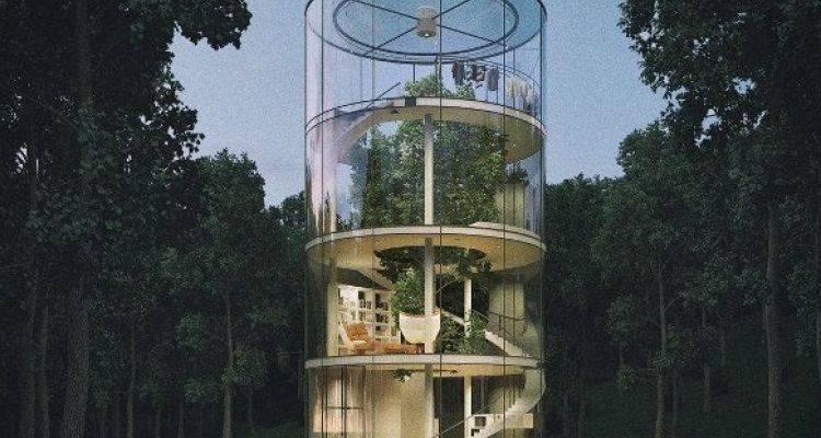 İlginç Tasarımlı Cam Ağaç Ev