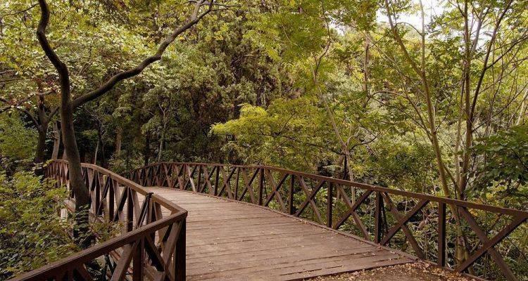 Yeşil Alanlar İspark'a Tahsil Edildi