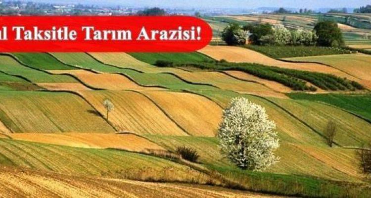 Tarım Arazilerinin Satışı Uzatılıyor
