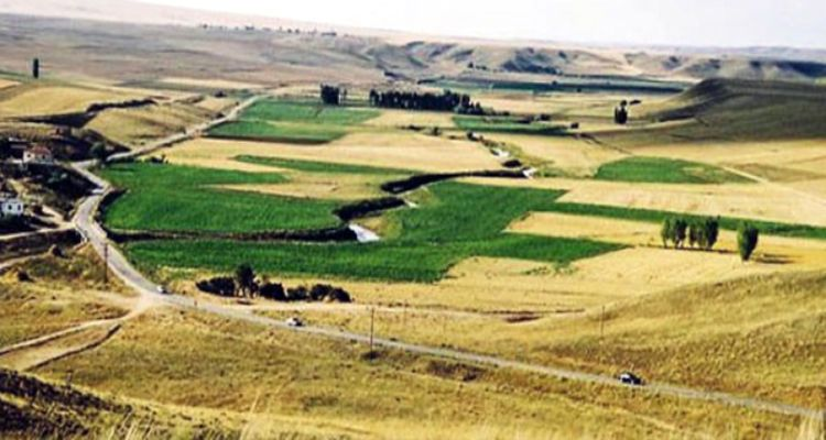 85 Bin Metrekarelik Araziyi Mehmetçik'e Bağışladı