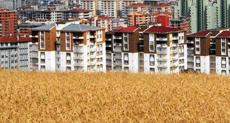 TOKİ Samsun Ulugazi Toplu Konut Projesi