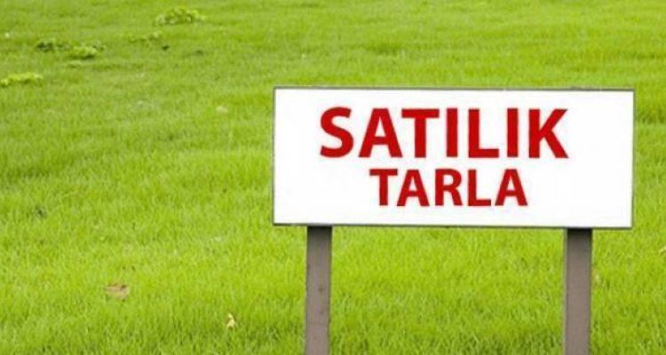 Silivri Belediyesi'nden 3.3 Milyon TL'ye Satılık Tarlalar