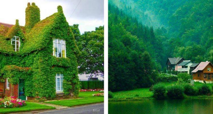 Doğayla İç İçe Olan Evler