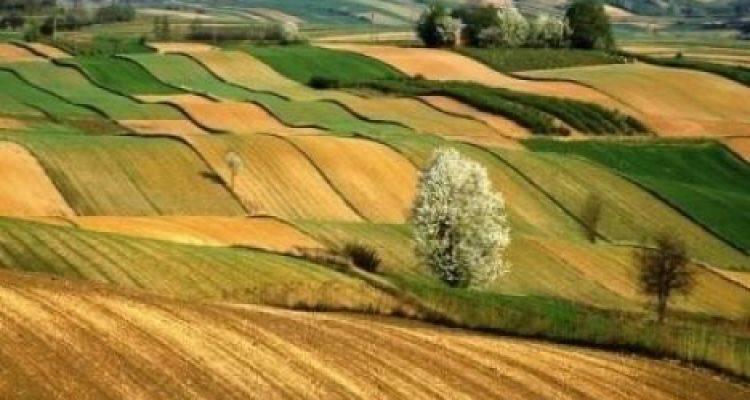 Hükümetten 2B ve Tarım Arazisi Olana İkinci Şans