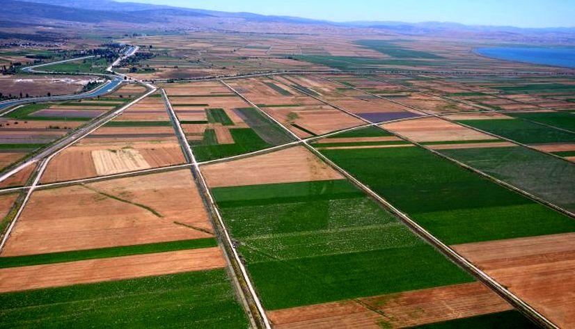 Hazine arazilerinin çiftçilere kiralanması sürüyor